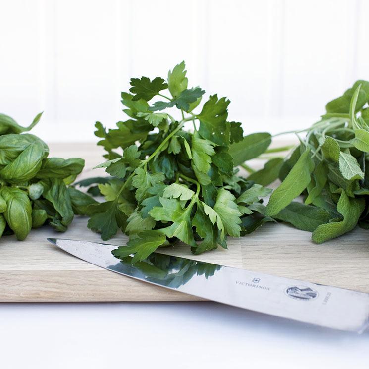 ¿Sabes qué hierbas aromáticas no pueden faltar en tu despensa y cómo cocinarlas?