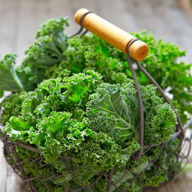 Cocina rica, sana y variada con kale
