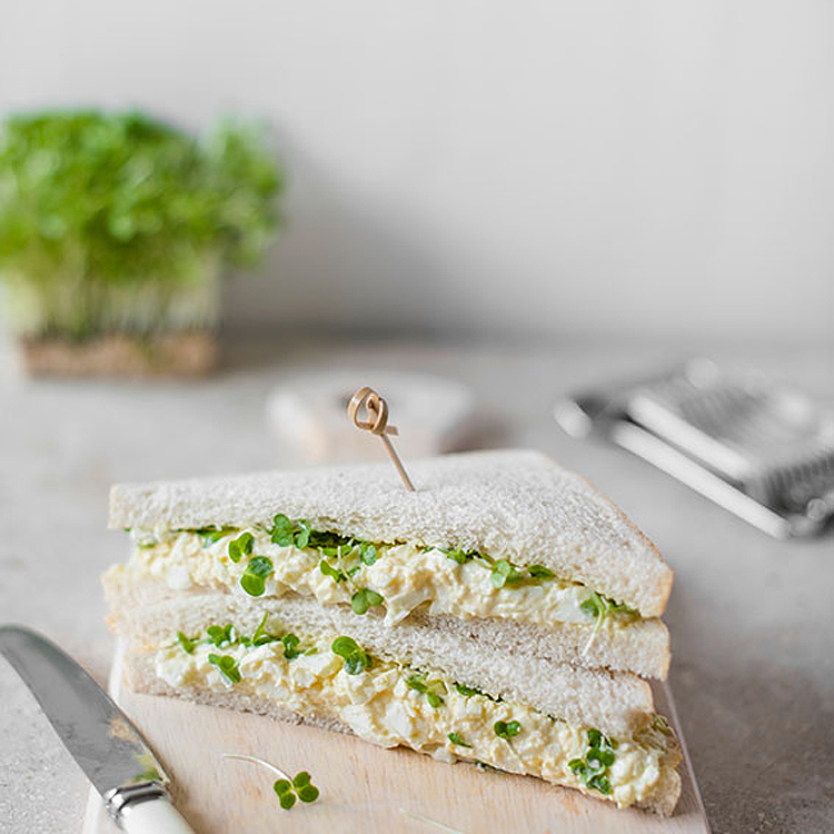 sandwich-huevo