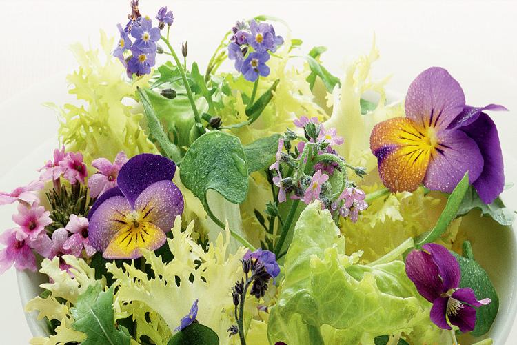ensalada-jardin