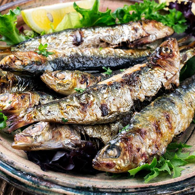 Cómete el mar de un bocado con estas originales recetas con sardinas