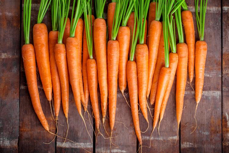 zanahorias-adobe