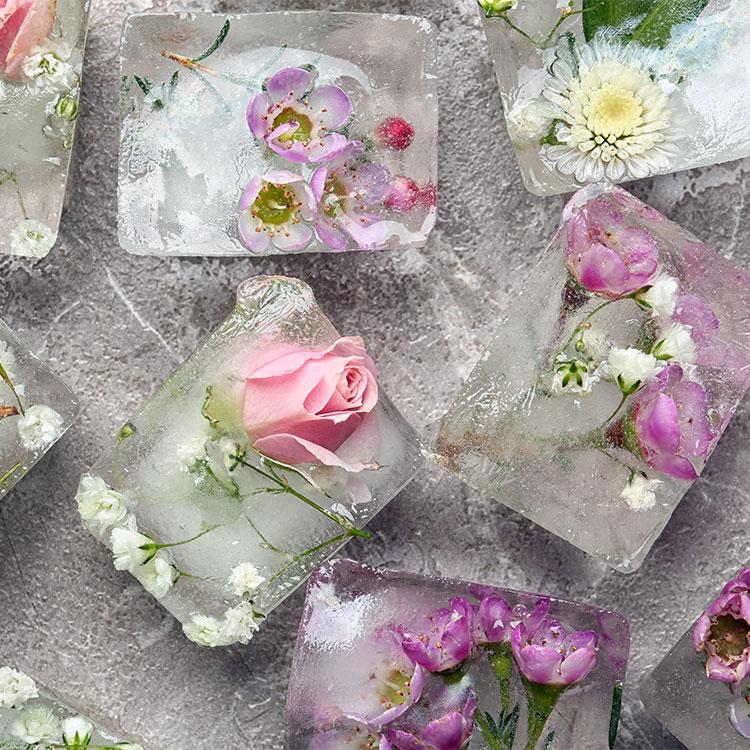 Hielos con flores