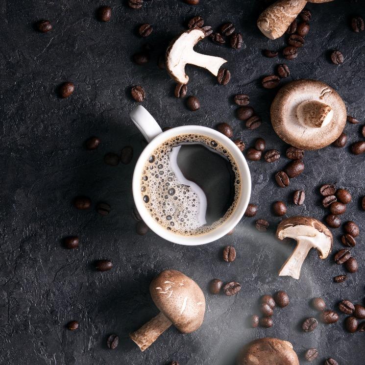 Café de champiñones: la bebida que te espera a la vuelta del verano