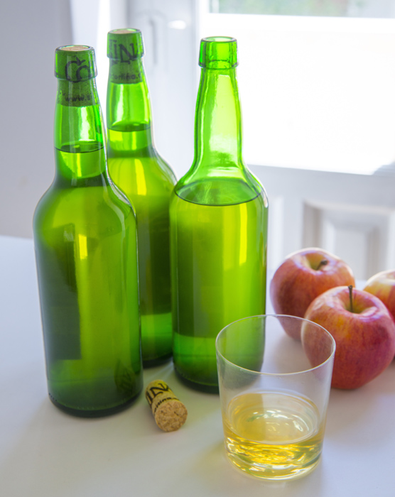 botellas-vertical