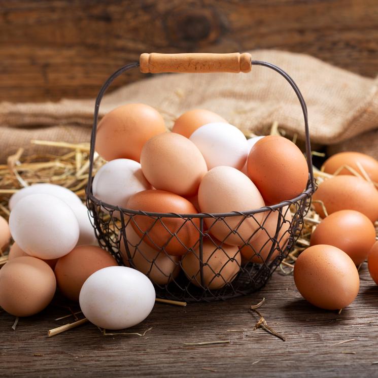 Cómo reducir el colesterol: ni dieta baja en grasas, ni menos huevos, ni yogures 'milagrosos'