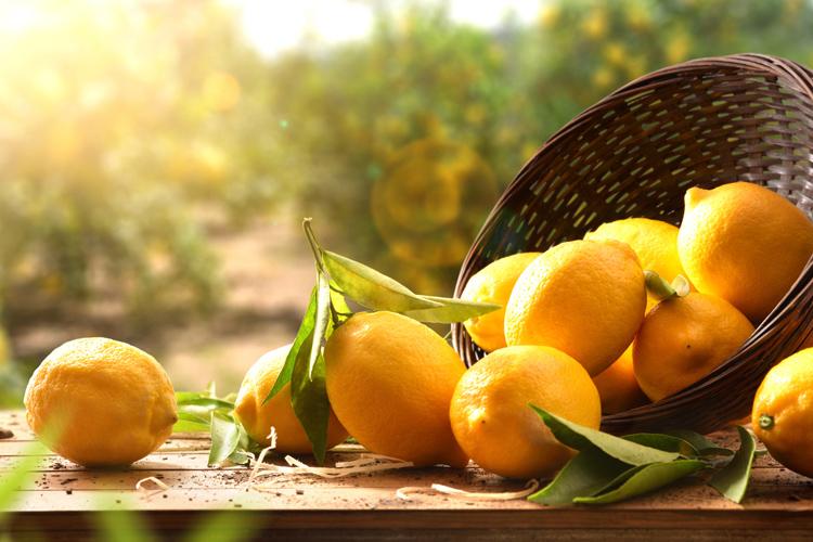 cesta-limones