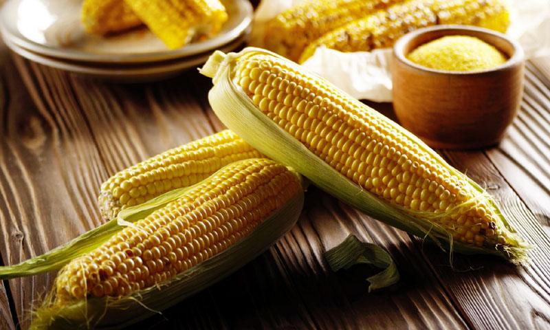 ¿Sabes de cuántas maneras distintas se puede cocinar el maíz?