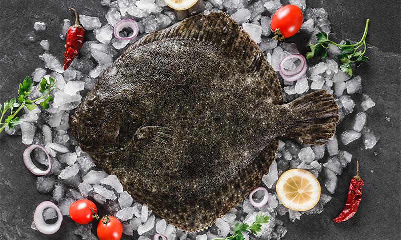 Cocina con rodaballo, un pescado delicioso y muy saludable