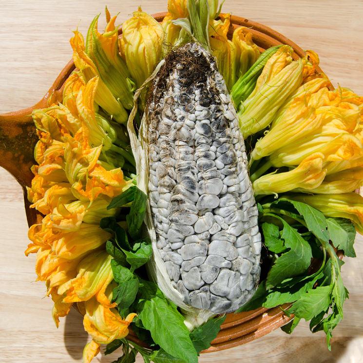 Huitlacoche, comida de dioses
