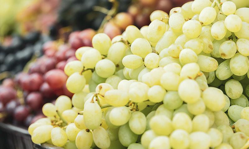 ¡Temporada de uvas! sácales todo el jugo con estas originales recetas