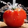 ¿Cómo evitar la contaminación de los alimentos?