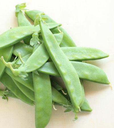 cocina ligera cinco ensaladas un mismo ingrediente