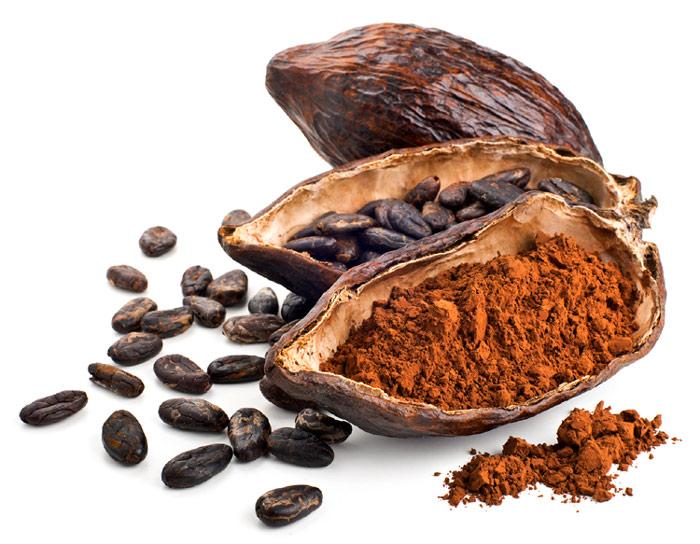 Resultat d'imatges de cacao