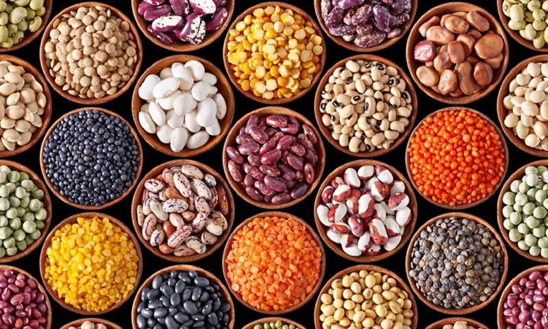 Cocina y salud: proteínas vegetales, ¿sabes en qué alimentos podemos encontrarlas?