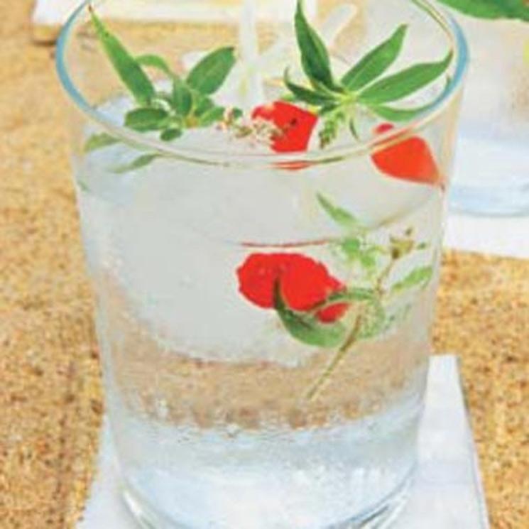 Gin tonic con rosas rojas