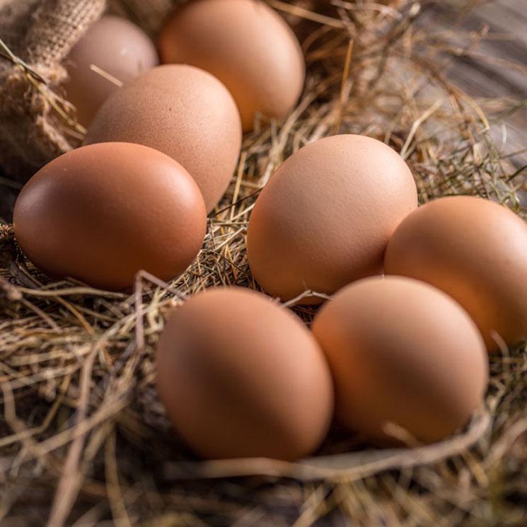 7 recetas para disfrutar del huevo