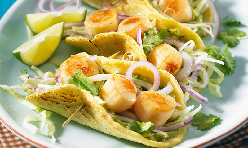 Tacos de vieiras a la plancha con ensalada de col