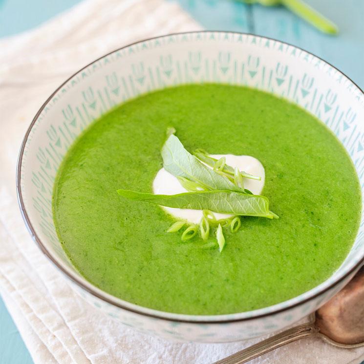 Sopa cremosa de calabacín y espinacas