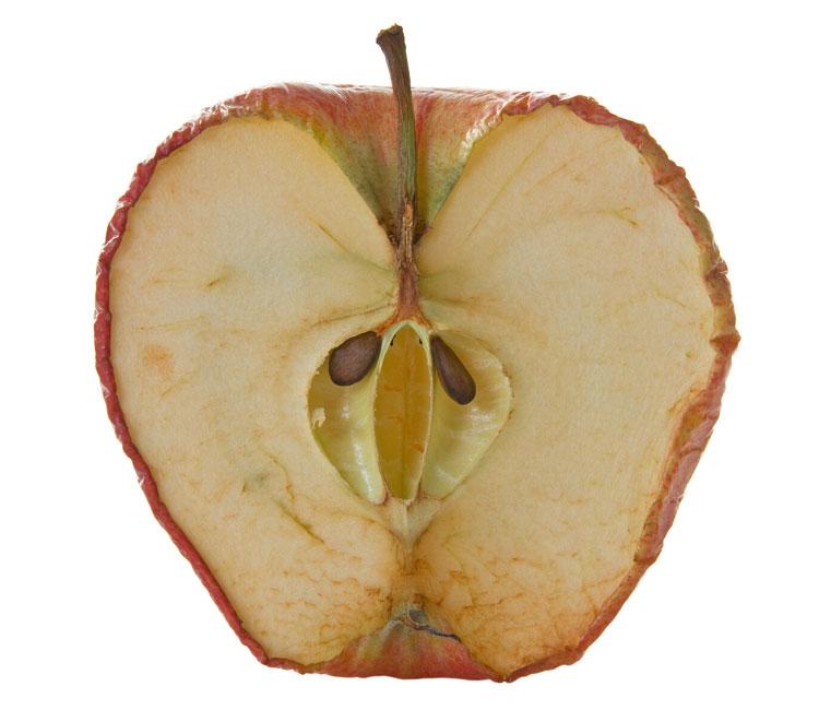manzana-age