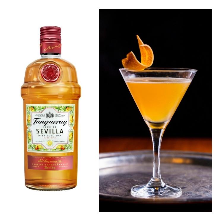 gin-tonic-jasmin-tanqueray