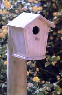 Constr yeles un hogar ellos tambi n lo har an - Casitas para pajaros jardin ...