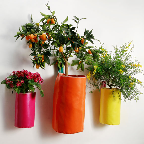 Decora Tu Casa Con Flores Y Plantas Naturales Foto 3