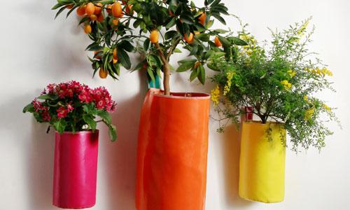 Decora tu casa con flores y plantas naturales