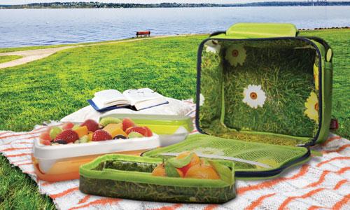 Comida para llevar de picnic stunning comida para llevar - Comida para llevar de picnic ...