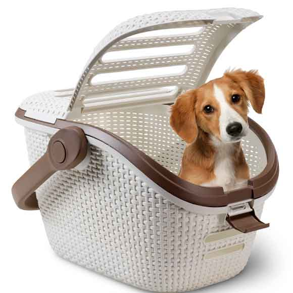 accesorios para mascotas imagui