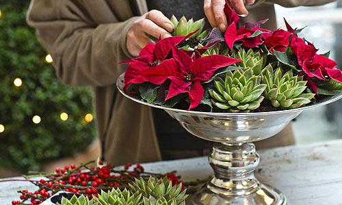 Hazlo t misma tres centros para decorar tu mesa estas - Centros navidenos de mesa ...