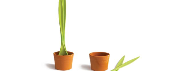 ¿Son plantas? No, accesorios para el hogar