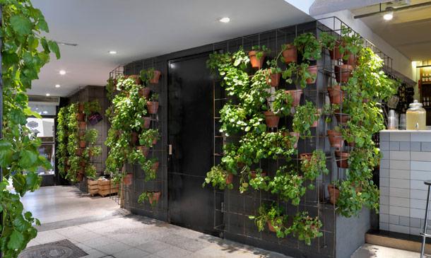 La decoración ecológica y biosaludable se extiende a mercados y restaurantes