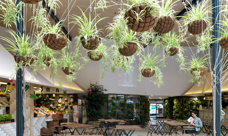 La decoraci n ecol gica y biosaludable se extiende a for Decoracion de pared para restaurante