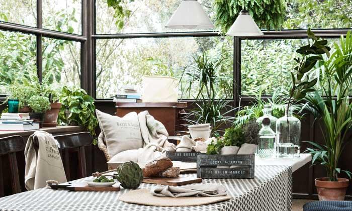Decorar Con Plantas Y Flores Quieres Saber C Mo Utilizarlas En Cada Rinc N De Tu Casa