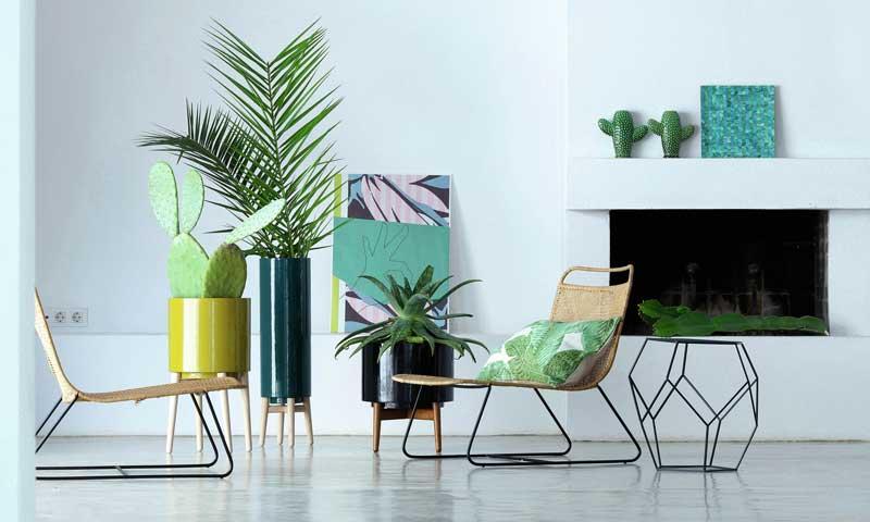 Plantas: el toque más fresco e inspirador de la decoración