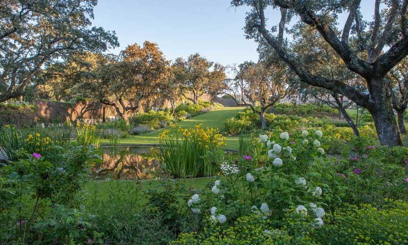 'Operación jardín': cómo ponerlo en forma este verano