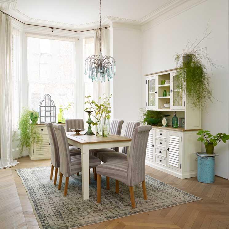 Las mejores plantas para tu casa for Plantas naturales para decorar interiores