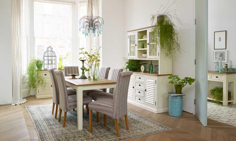 Las mejores plantas para tu casa - Las mejores plantas de interior ...