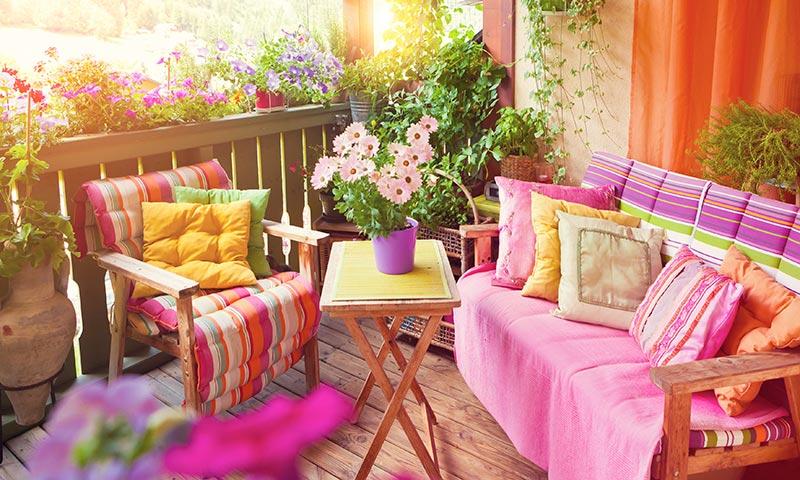 Un Toque De Color Las Flores De Exterior Que Mejor Resisten El Verano - Plantas-de-exteriores-con-flores