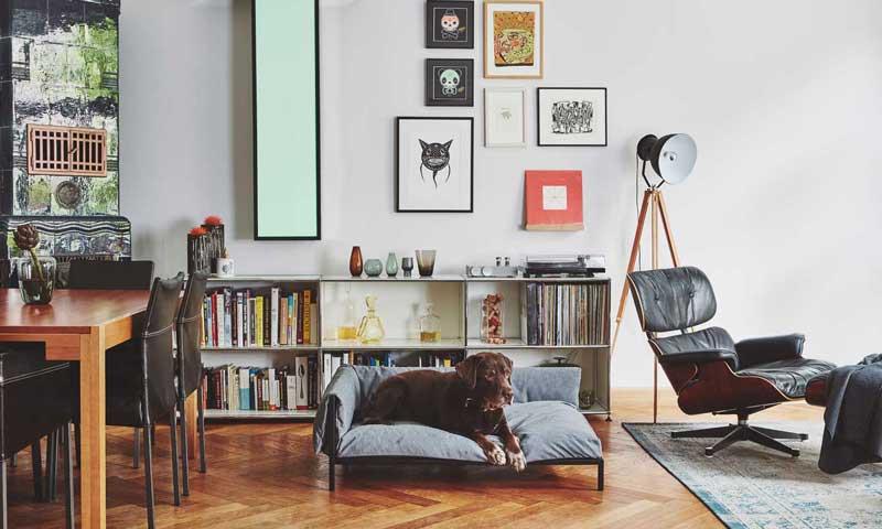 Tendencias casa decor 2015 foto for Estilo arquitectonico que usa adornos con plantas y animales