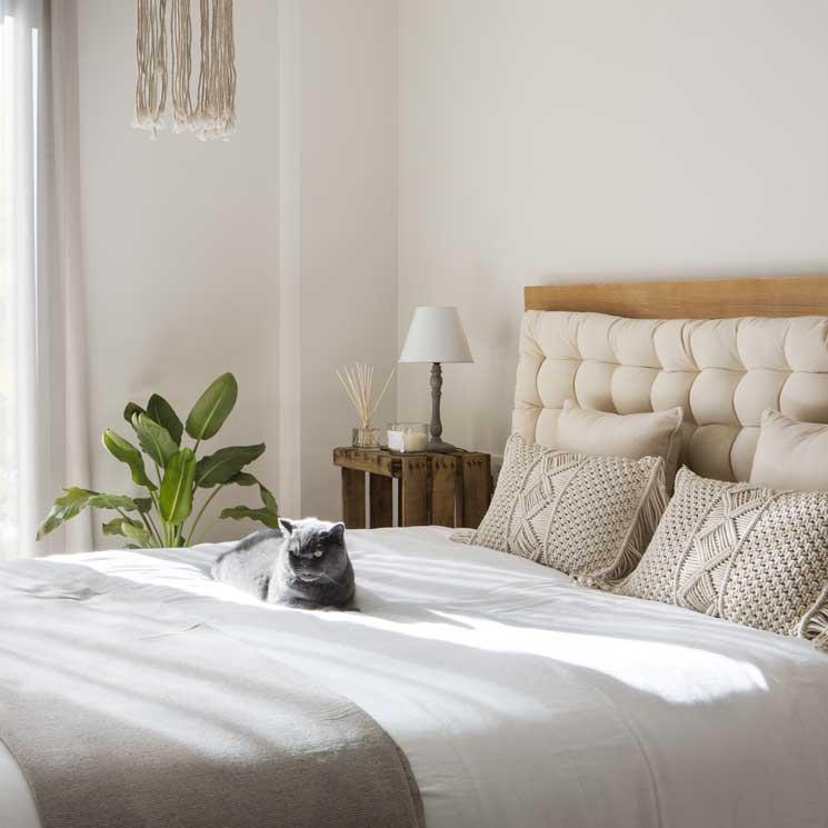 Claves para preparar y decorar un cuarto de invitados ...