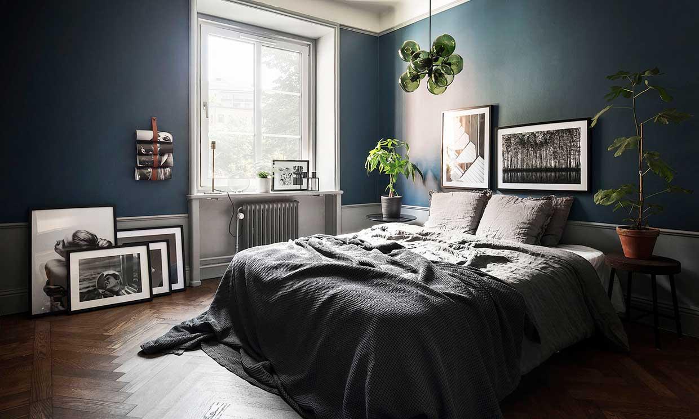 Descubre cómo activar el Chi de tu casa con el 'Feng Shui' y las plantas de interior