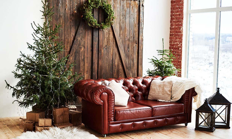 Este año decora tu casa con un árbol de Navidad natural