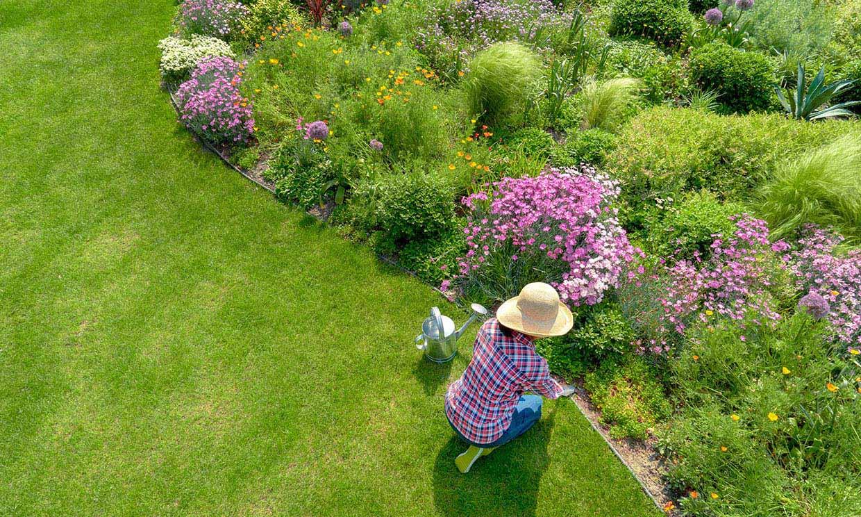 Todos los cuidados que debes darle a tu jardín en primavera