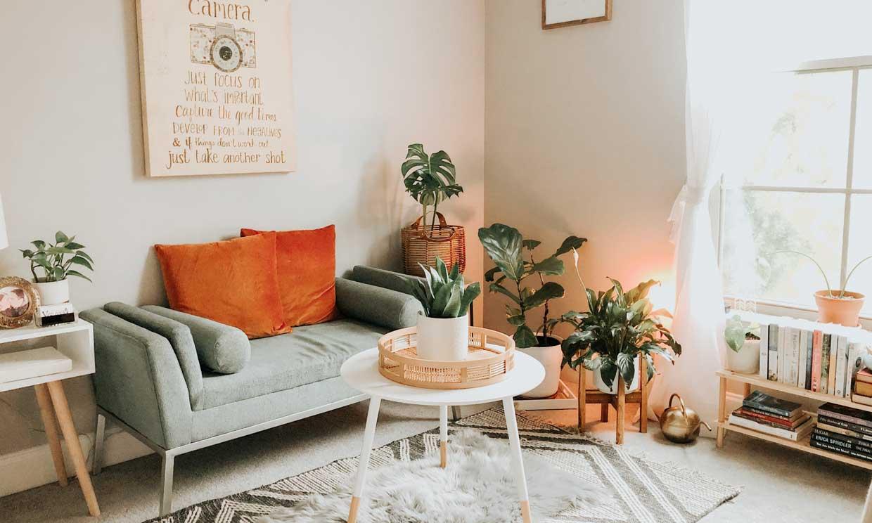 ¿Quieres decorar tu casa y no sabes por dónde empezar? ¡Sigue leyendo!