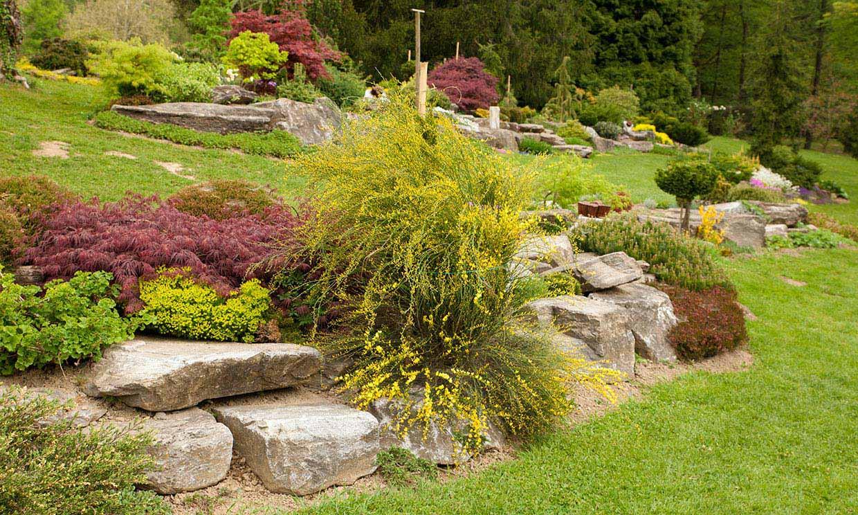 ¿Sabes cómo crear un jardín de rocalla?