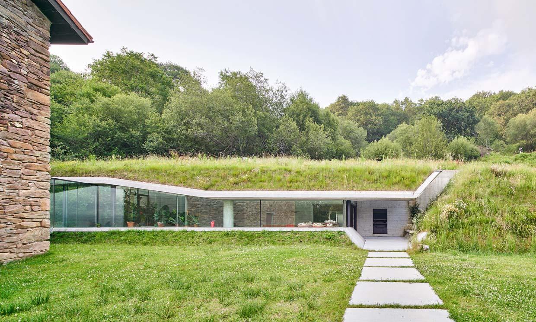 Cubiertas verdes: el techo vegetal para tu casa o edificio