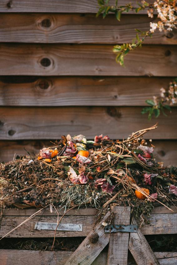 Plantas y flores para hacer compost