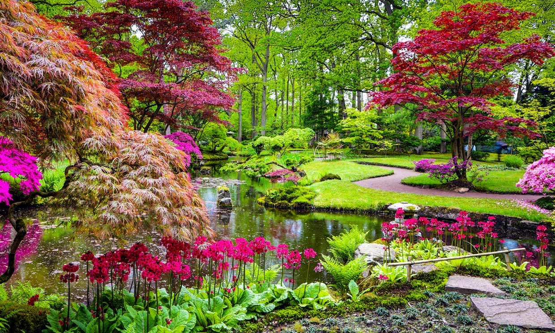 Cómo plantear el diseño de un jardín japonés